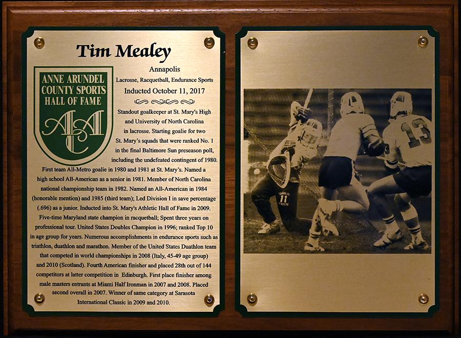 2017 Tim Mealey